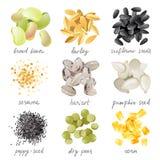 Grains, graines et haricots Photo stock