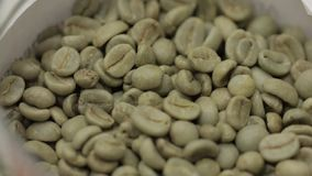 Grains of Green Coffee. Green coffee beans in a green cup close-up, healthy food stock video footage