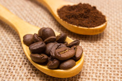 Grains and ground coffee with wooden spoon on jute canvas Stock Images