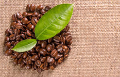 Grains and leaves coffee Royalty Free Stock Image