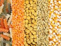 Grains lentille, pâtes, maïs, blé Photos stock