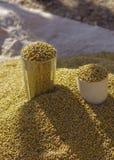 Grains locaux à vendre dans Lalibela photo libre de droits