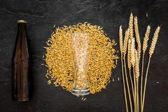 Grains and ears of malting barley near beer bottle on black background top view copyspace. Grains of malting barley near beer bottle on black background top view Royalty Free Stock Image