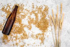 Grains of malting barley near beer bottle on grey background top view.  Royalty Free Stock Image