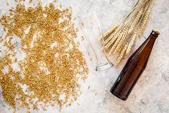 Grains of malting barley near beer bottle on grey background top view copyspace. Grains of malting barley near beer bottle on grey background top view Royalty Free Stock Photo