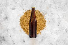 Grains of malting barley near beer bottle on grey background top view copyspace. Grains of malting barley near beer bottle on grey background top view Royalty Free Stock Photos