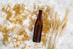 Grains of malting barley near beer glass and bottle on grey background top view. Grains of malting barley near beer glass on grey background top view Stock Images