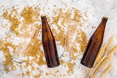 Grains of malting barley near beer glass and bottle on grey background top view. Grains of malting barley near beer glass on grey background top view Stock Photography