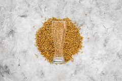 Grains of malting barley near beer glass on grey background top view copyspace. Grains of malting barley near beer glass on grey background top view Stock Photos