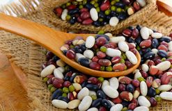 Grains. Mix beans in spoon Royalty Free Stock Photo