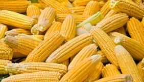 Grains mûrs organiques frais à un marché en plein air Photographie stock