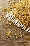 Grains of oats on the background of jute. Grains of oats on  background of jute Stock Images