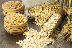 Grains of oats in the bag Royalty Free Stock Images