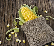 Free Grains Of Corn On A Cob And Sack On Wooden Table Stock Photos - 46574193