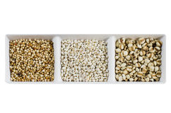 Grains over white Royalty Free Stock Photo