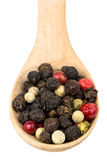 Grains of pepper in a spoon Stock Image