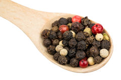 Grains of pepper in a spoon Royalty Free Stock Photo