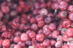 Pink pepper. Grains of pink pepper Royalty Free Stock Images
