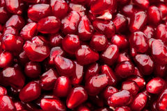 Grains of a pomegranate Royalty Free Stock Photos