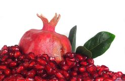 Grains  pomegranate Stock Photos