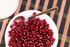 Grains of a pomegranate Imagem de Stock Royalty Free