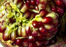 Grains of a pomegranate fruit closeup shot macro Royalty Free Stock Photo
