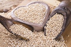 Grains of quinoa on wood Royalty Free Stock Photography