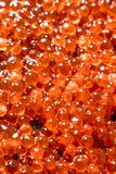 Grains of red caviar. Texture. Top view stock photo