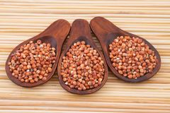 Grains of red and white sorghum Sorghum.  Royalty Free Stock Photos