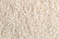 Grains of rice. Closeup Royalty Free Stock Images