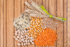 Grains of rice, corns, lentils, buckwheat and chickpeas with wheat ears Stock Photography