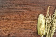 Grains of ripe corn on wooden background stock photos