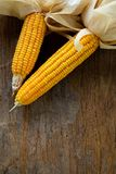Grains of ripe corn on wooden background. Corn cob on wooden bac. Kground Royalty Free Stock Photo