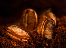 Grains of roasted coffee Stock Images