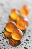 Grains of roe close-up Stock Image