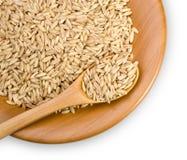 Grains of  rye Stock Image