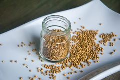 Grains sains de sarrasin dans le pot en verre du plat blanc photo stock