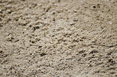 Grains of sand Stock Photography