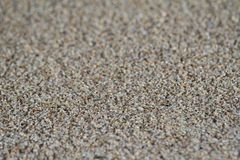 Grains of sand Royalty Free Stock Photo
