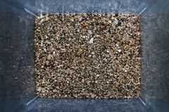 Grains of sand from the sea are found on shelling beaches. Close-up view of grit in the box. Top view, marine concept royalty free stock image