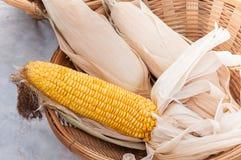 Grains secs dans le panier, panier d'A de maïs sec pour le fond Photographie stock