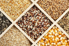 Grains and Seeds background Stock Photos