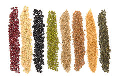 Grains and seeds Royalty Free Stock Image