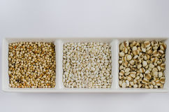 Grains set on white Royalty Free Stock Images