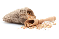 Grains in small burlap sack Royalty Free Stock Photo