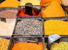 Grains and spices, Jodhpur, India. Stall with different kinds of grains, dhall, lentils, bean sprout and spices at the market in the old city of Jodhpur Royalty Free Stock Images