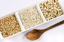Grains and spoon Royalty Free Stock Photo