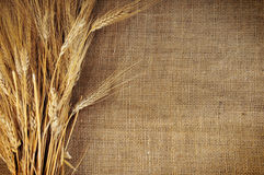 Grains on traditional fabrics Royalty Free Stock Image