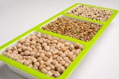 Grains. stock image