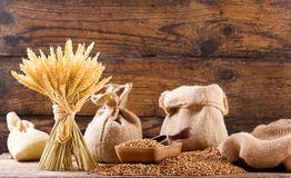 Grains and wheat ears Stock Images